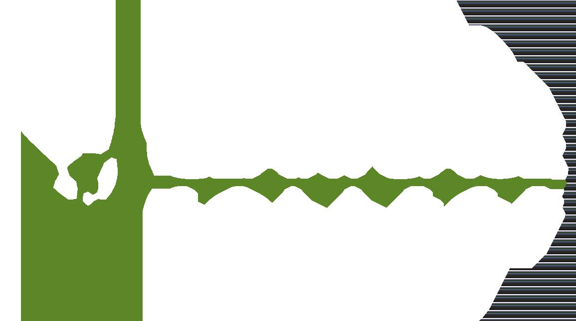 Clary Sage